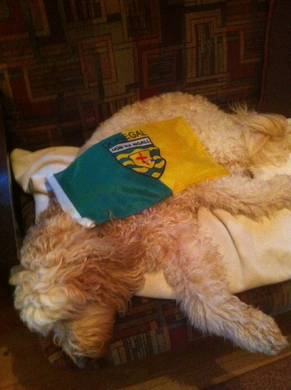 In the mountains of North Carolina, our dog Guinness after the game, totally wrecked....just like us....!!!!  Michael and Mary McCallion, and 'Guinness'....