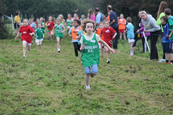 Picture And Results Special Donegal Primary Schools Cross