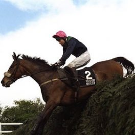 Grand National winner Rough Quest, trained by Downings man Terry Casey, has died.