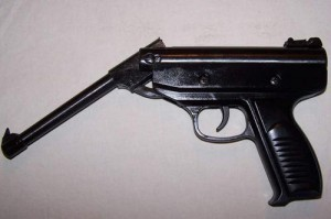 A pellet gun is believed to have been used in the attack.
