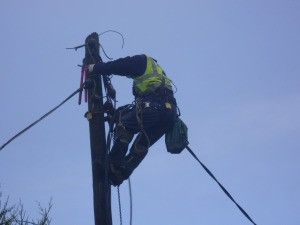 Workers have been warned to avoid climbing ESB poles.