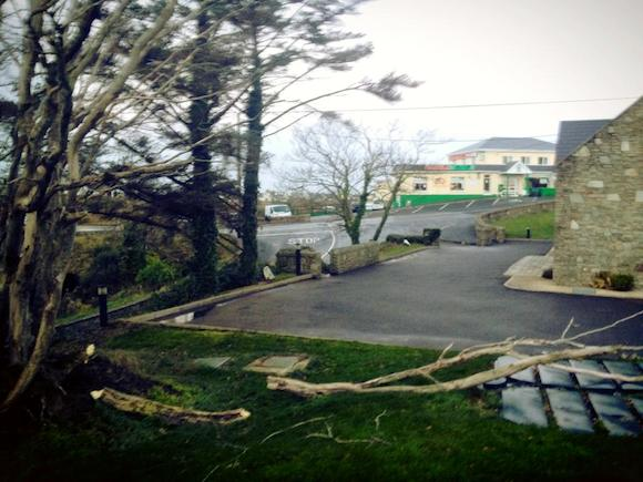 Trees down in Gaoth Dobhair