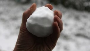 The gang of youths filled snowballs with rocks and threw them at passing cars.