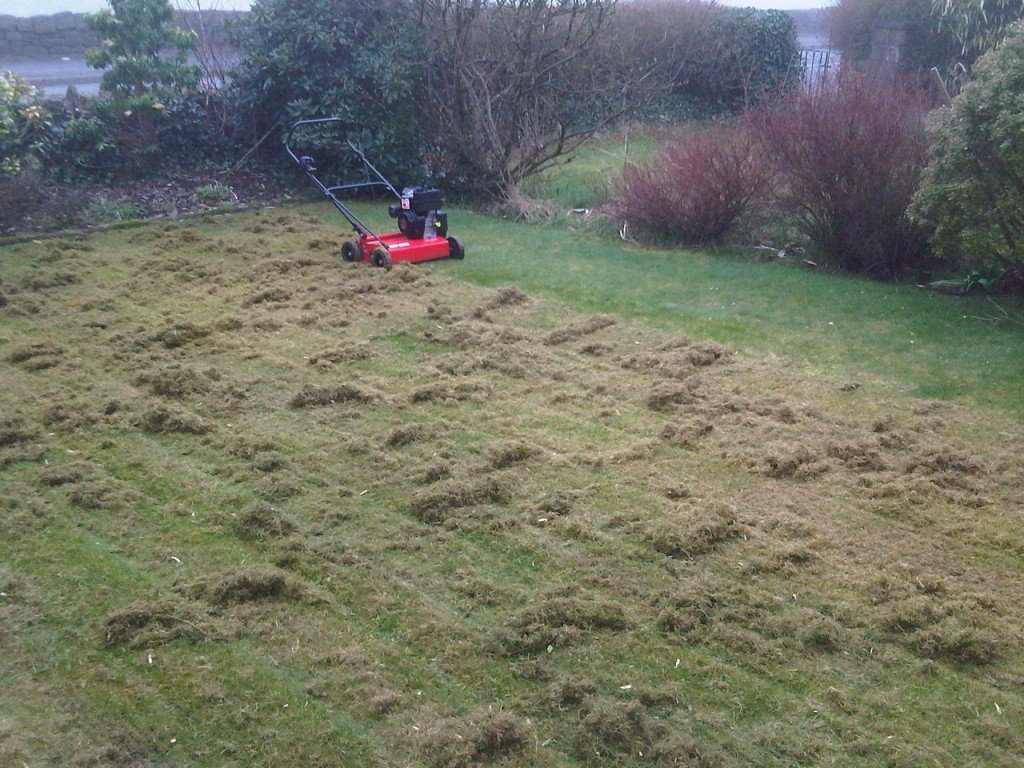 Scarification of lawns