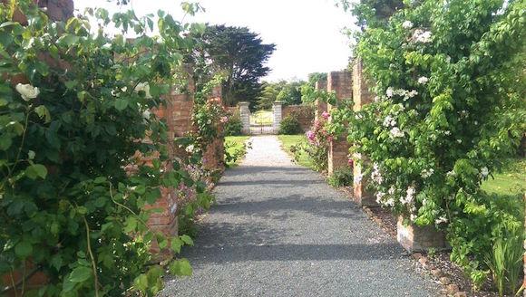 Walking through the rose pergola in Ballywalter Park