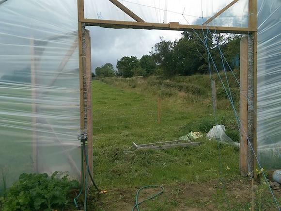 Ballyholey Farm Shop polytunnel sitting wide open