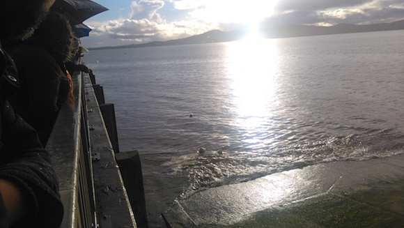 Some of the baskets of flowers dropped into the sea at Buncrana Pier by Louise James and her family. Pic by Donegal Daily.